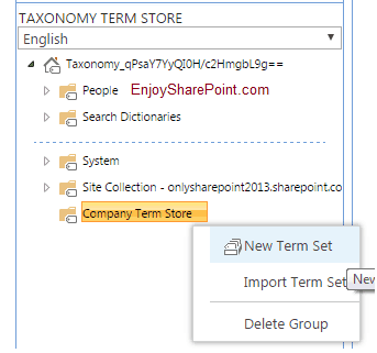 create and manage terms in a term set