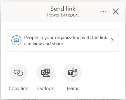 Share option Power BI report